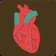 circulatory.png