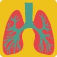 respiratory.png